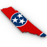 political tennessee 3ds