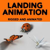 3d animation landing model