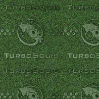 grass lawn texture