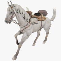 3d model of white horse animal