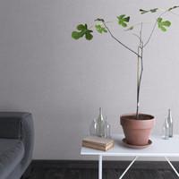 fig tree 3d max