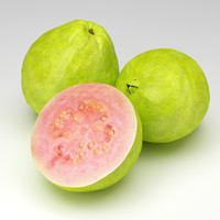 3d model fruit guava
