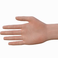 3d model male teen hand