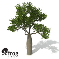 3d xfrogplants boab tree