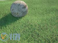 3d model grass realistic