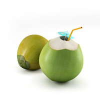 3d coconut coco green model