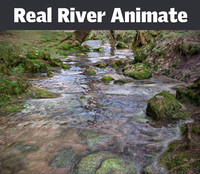 Real River Animated