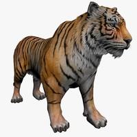 3d tiger animal