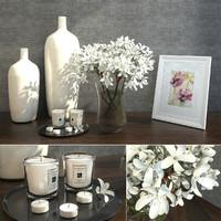 decorative set interior 3d max