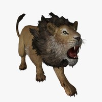male lion animal 3d model