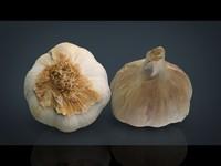 garlic 3d obj