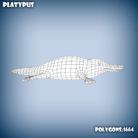 base mesh platypus 3d model