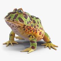 pacman frog pose 3 3d model