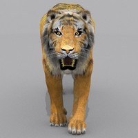 zbrush tiger cat fur 3d model