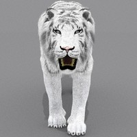 3d model zbrush white tiger cat fur