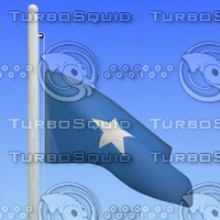 3d max flag somalia - loop