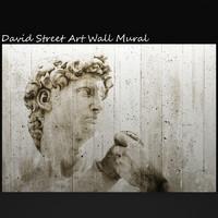 david street art wall 3d model
