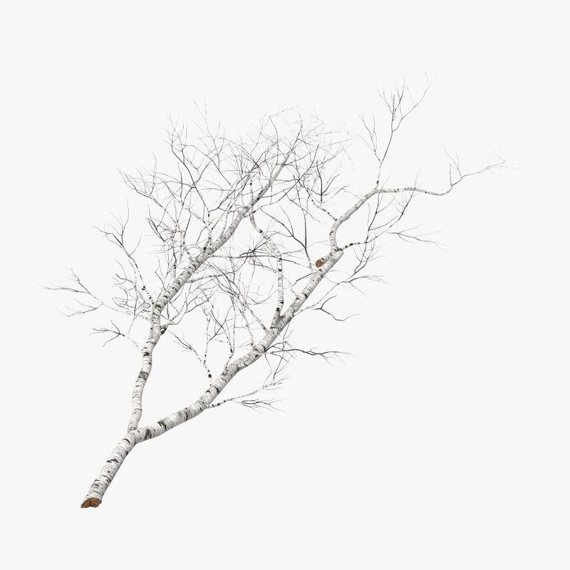Fallen_Logs_Birch_01_001_Thumbnail_Square0000.jpg