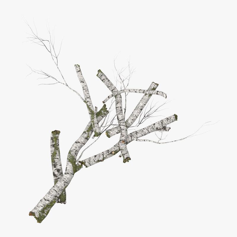 Fallen_Logs_Birch_03_001_Thumbnail_Square0000.jpg