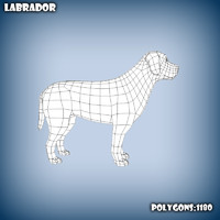 3d model base mesh labrador dog