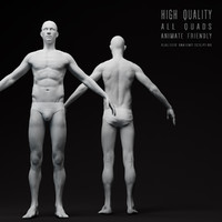 3d realistic male body model