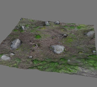3d model of forest ground