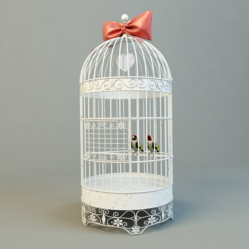 Cage-with-birds-1.jpg