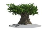 obj giant old tree