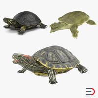 turtles 3 3d model