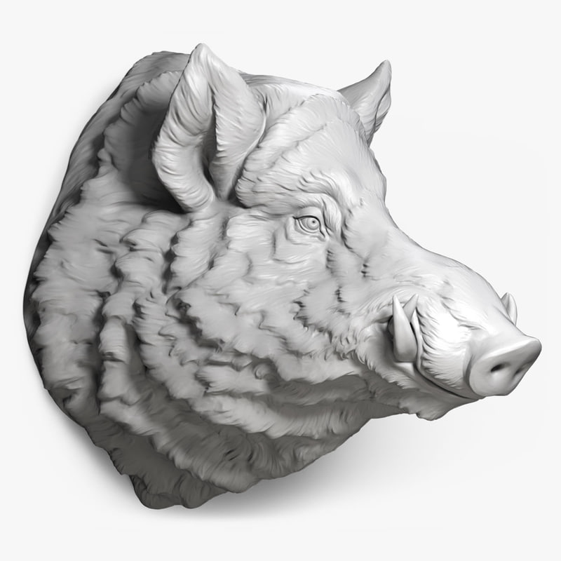 wild-boar-head-digital-sculpture-3d-printable-cnc-000.jpg