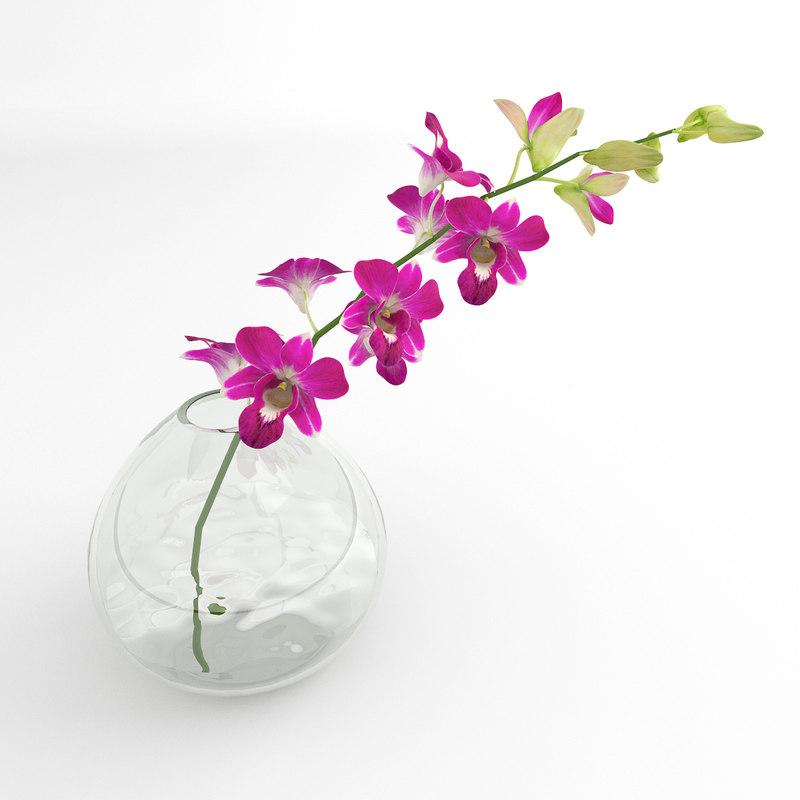 dentro_orchid_glsvase_02_07.jpg