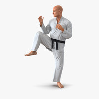 karate fighter pose 3 3d model