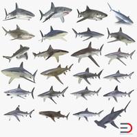 sharks 9 3d 3ds