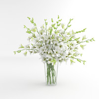 orchid flower white 3d model