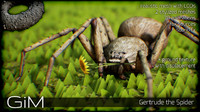 3d animal gertrude spider