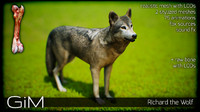animal richard wolf fbx
