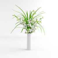 3d orchid flower dentrobium