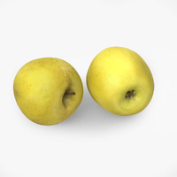 apple golden delicious 3d model