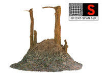 3d jungle tree ultra hd model