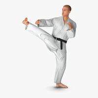 3d karate fighter pose 2