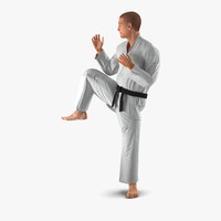 3d model karate fighter pose 3