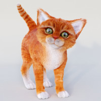 realistic red cat fur 3d model