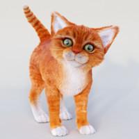 realistic red cat fur 3d model