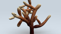 3d obj mycorrhiza