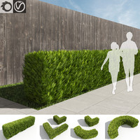thuja hedges set 3d obj