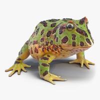 pacman frog 3d model