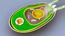 Algae 3D models