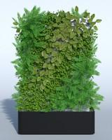 outdoor plant 3d model