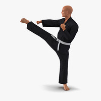 3d model karate fighter pose 2