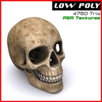 max human skull